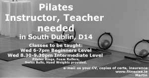 Pilates Instructor Teacher Jobs Vacancies in South Dublin, Churchtown Dublin 14 Ireland Fitnecise Studios Martin Luschin