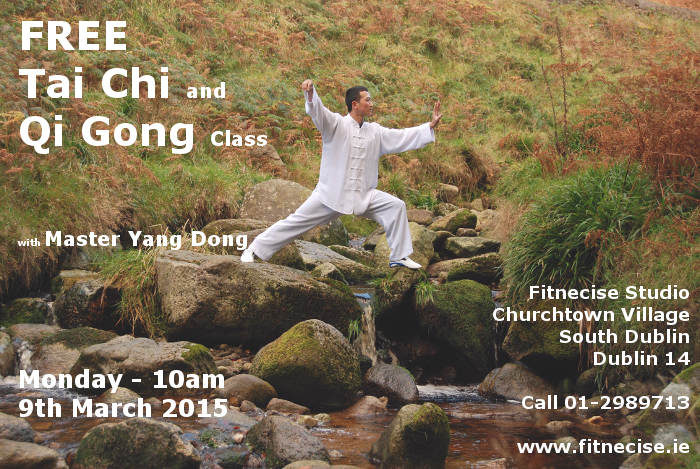 Tai Chi, Qi Gong - Chi Kung with Yang Dong in South Dublin Fitnecise Studios Churchtown Village